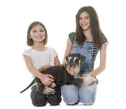 Children and miniature schnauzer royalty free stock photography