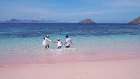 Children and mother running on Pink Beach. Back view of two children and their mother running on the Pink Beach while holding hands in Komodo Island near Bali stock footage
