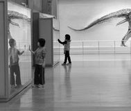 Children at the museum. Children mesmerized by wonders at the natural history museum. Photo taken on December 18, 2010 in Toronto, Canada Royalty Free Stock Photos
