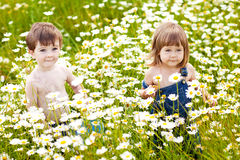Children nature. Boy and girl in flowers Royalty Free Stock Images