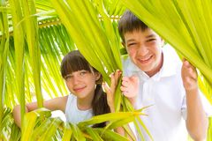 Children in palm branches. Two children playing in the leaves of palm branches or fronds Stock Photos
