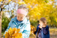 Children in the park in an autumn day Royalty Free Stock Photo