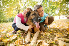Children in the park with a German Shepherd Royalty Free Stock Photos