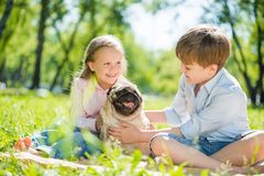 Children in park with pet. Adorable boy and girl in summer park with their dog Royalty Free Stock Photo