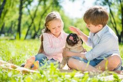 Children in park with pet Royalty Free Stock Image