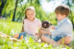 Children in park with pet Stock Photos
