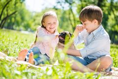 Children in park with pet Royalty Free Stock Photos