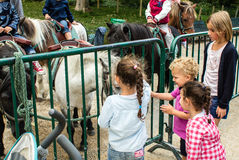 Children pet ponies in Jardin de Luxembourg, Paris, France. Four children gather near a barricade to reach through and pat a pony at a station in the Luxembourg royalty free stock photography