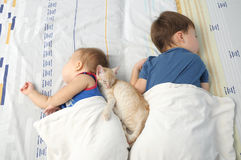 Children and pet sleeping together Royalty Free Stock Photos