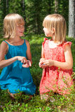 Children picking berries in a summer forest Stock Image