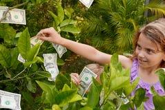 Children picking dollar bills from a money tree