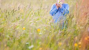 Children picking flowers on a meadow stock image
