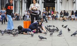 Children and pigeons in Venice royalty free stock photo