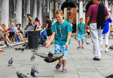 Children and pigeons in Venice royalty free stock image