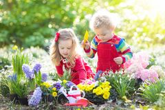 Kids plant and water flowers in spring garden royalty free stock image