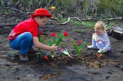 Children planting tulips over burned ground Stock Photo