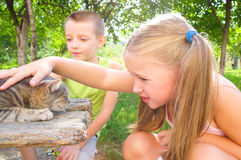 Children play with cat. Outdoors Stock Images