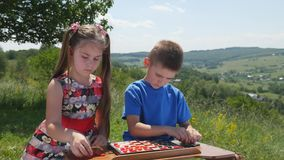 Children play checkers in the nature stock footage