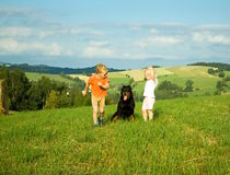 Children are play with dog Stock Images