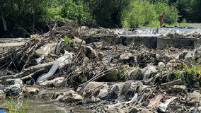 Children play near polluted mountain river. Plastic rubbish on branches. On banks stock footage