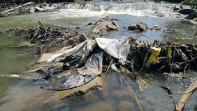Children play near polluted mountain river. Plastic rubbish on branches stock video footage