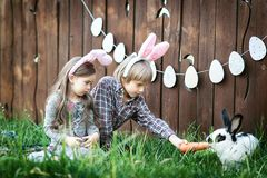 Children play with real rabbit. Laughing child at Easter egg hunt with white pet bunny. Little toddler girl playing with animal in Royalty Free Stock Image