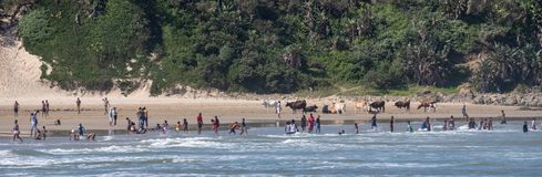 Children play in the sand at Second Beach, Port St Johns on the wild coast in Transkei, South Africa. stock images