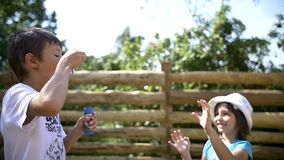 Children play with soap bubbles in the village. Children play with soap bubbles outdoors stock video