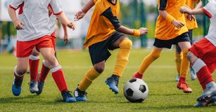 Children Play Soccer Game. Young Boys Running and Kicking Football Ball on Grass Sports Field stock images