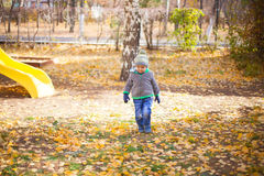 Children playing with autumn fallen leaves in park Royalty Free Stock Photo