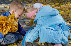 Children playing in autumn leaves Stock Images