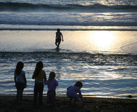 Children Playing at the Beach. Silhouettes of children playing at the beach at sunset Royalty Free Stock Photography