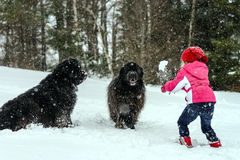 Children playing with big water-dog in snow Stock Images