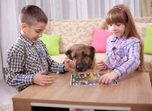 Children playing board game ludo at home on the table Stock Photo