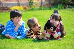 Children playing with dog. Three young children playing with small dog on lawn Stock Photography