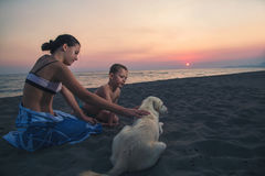 Children playing with a dog on the beach. Happy children playing with a dog on the beach Stock Photo