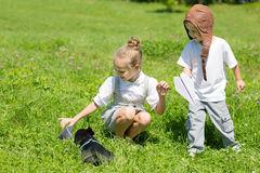 Children playing with the dog, French bulldog Royalty Free Stock Images