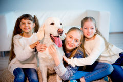Children playing with a dog Royalty Free Stock Image