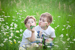 Children playing in field Royalty Free Stock Photo