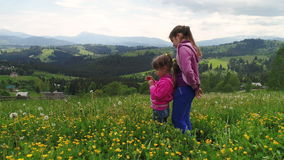 Children playing on a flowering lawn against the backdrop of the Carpathian Mountains stock video