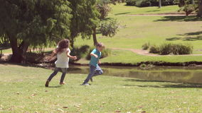 Children playing football in a park. On a sunny day stock video footage