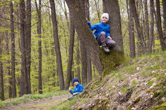 Children playing in forest Stock Photos