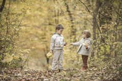 Children playing in a forest Stock Photo