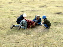 Children playing on the grass Royalty Free Stock Photography