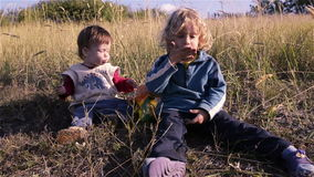 Children playing in the grass. Two brothers stock video