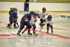 Children playing hockey Royalty Free Stock Images