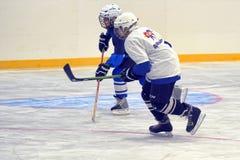 Children playing hockey Royalty Free Stock Image