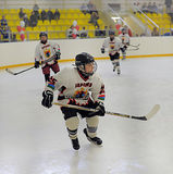 Children playing hockey Royalty Free Stock Image