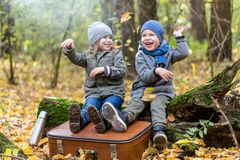 Free Children Playing In Autumn Forest Full Of Yellow Leaves With Vintage Suitcase Stock Photos - 161070763