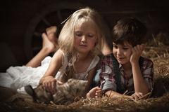 Children playing with a kitten Stock Images